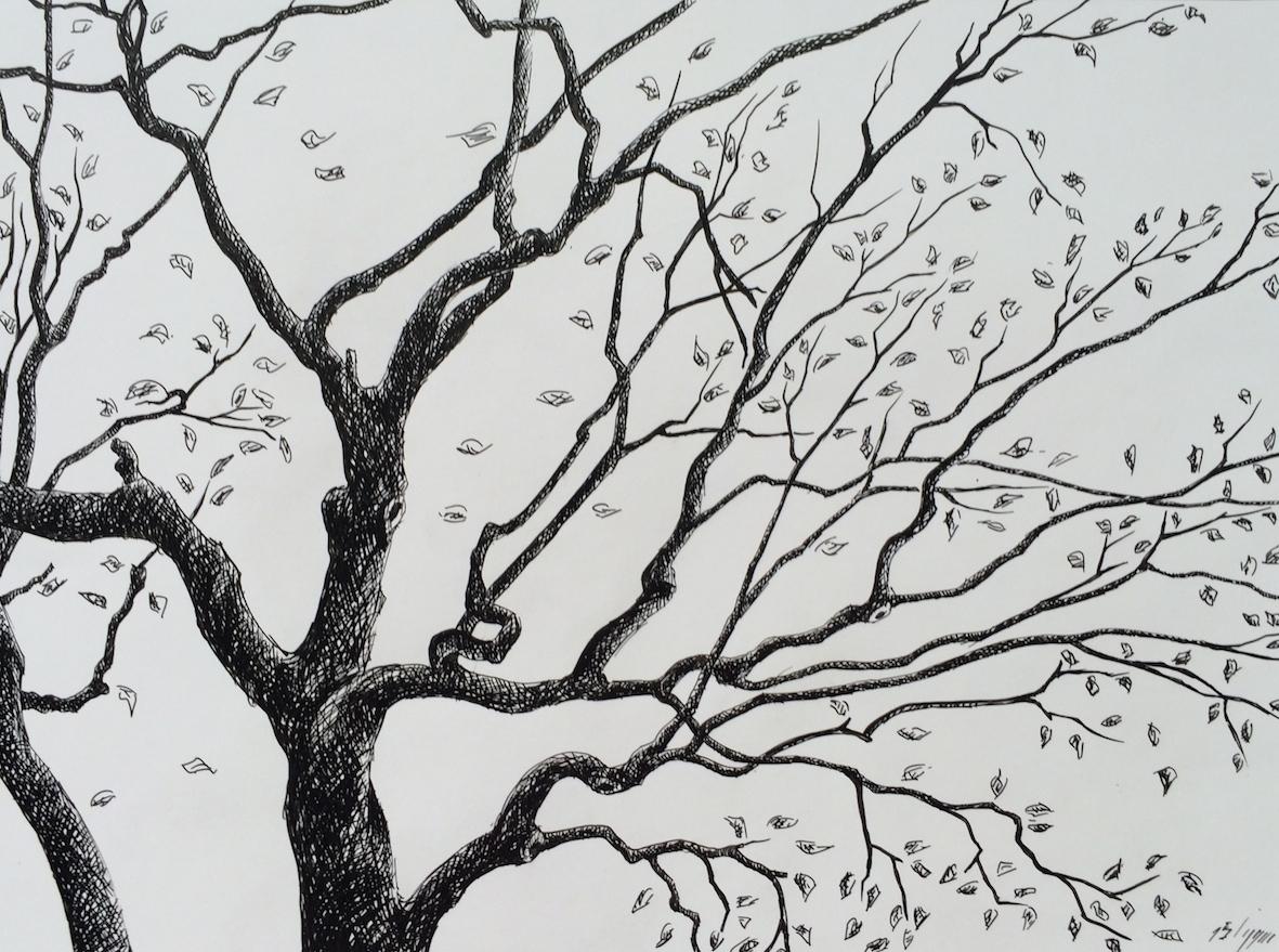 Plume sur papier,24 cm X 18 cm, 2016.JPG