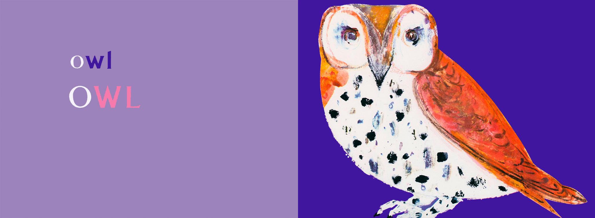 o-for-owl-brian-wildsmith-ABC.jpg