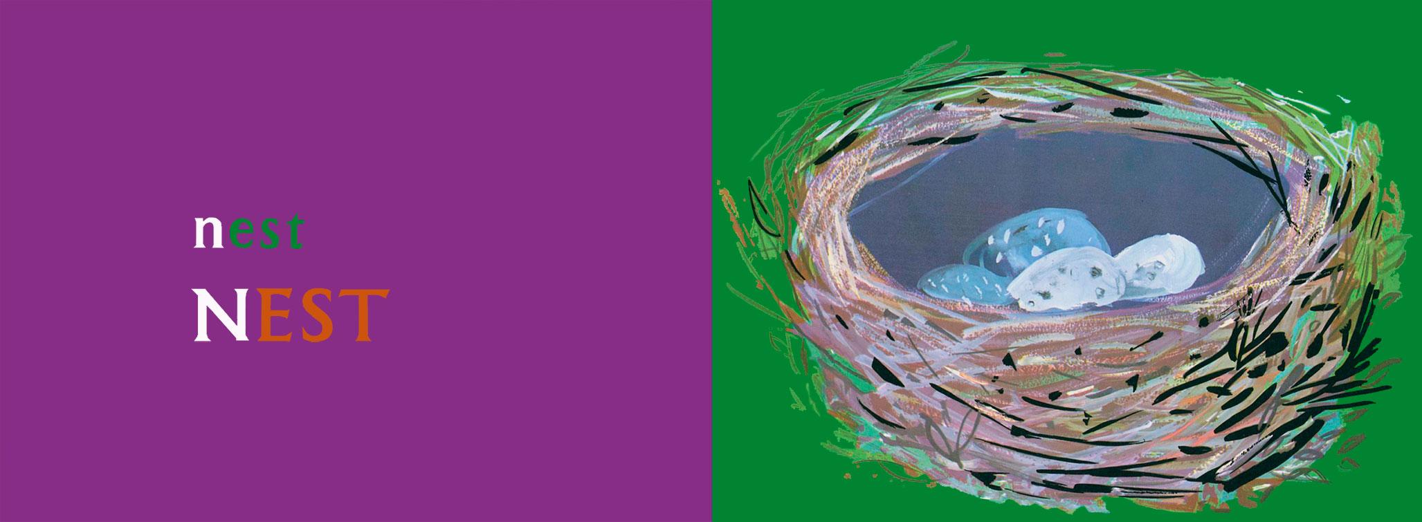 n-for-nest-brian-wildsmith-ABC.jpg