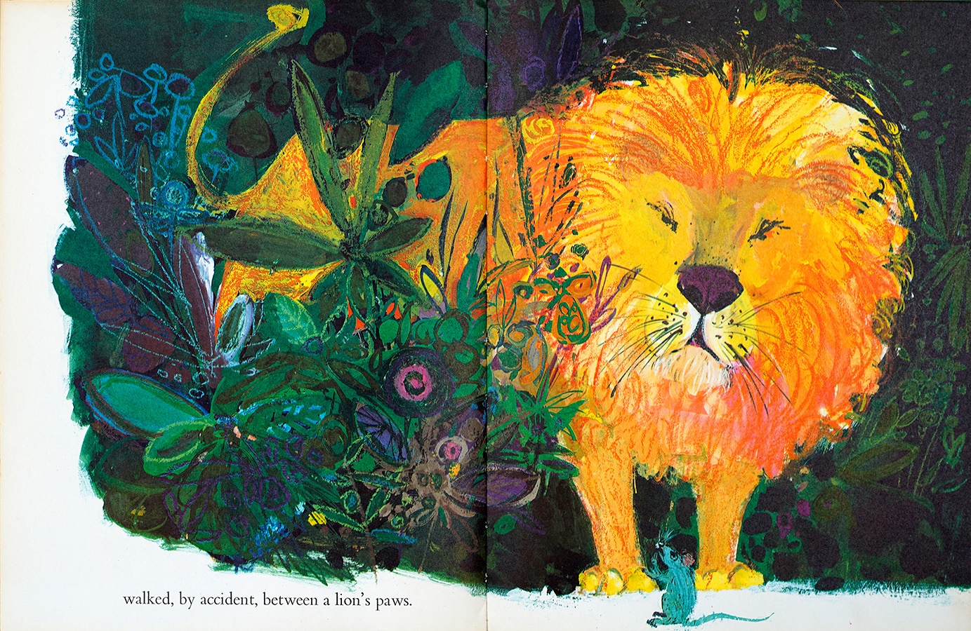 """A glowing golden lion was looking straight out of the picture at me…"" Bettina Hürlimann. From  The Lion and the Rat , Brian Wildsmith 1963 OUP & Atlantis Verlag in German.."
