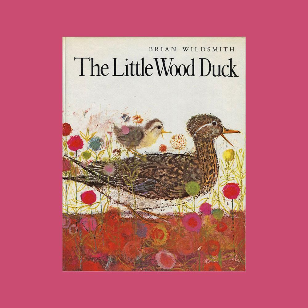 the-little-wood-duck-childrens-book-by-brian-wildsmith.jpg