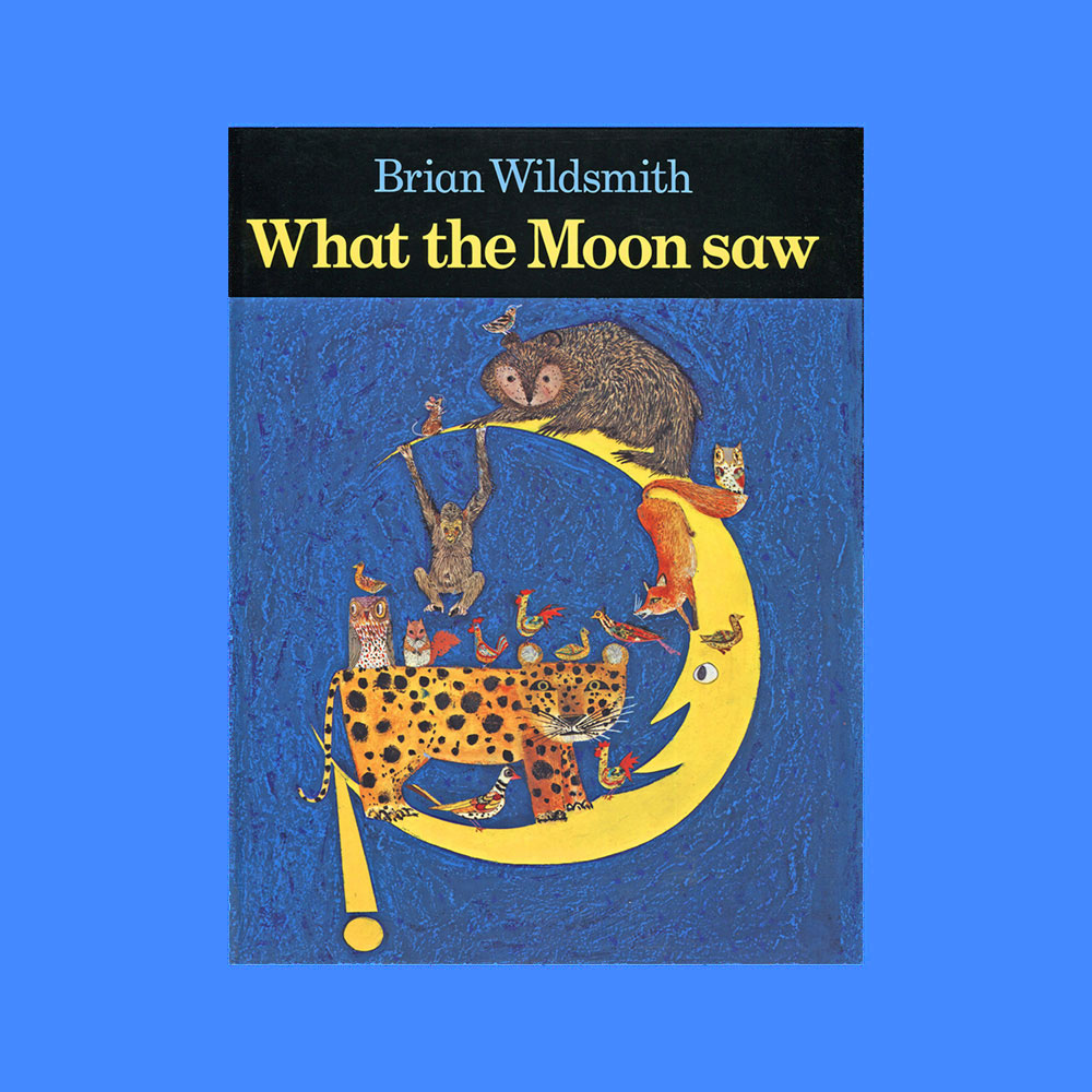 what-the-moon-saw-childrens-book-by-brian-wildsmith.jpg