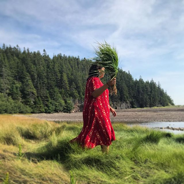 I love this image of a woman harvesting sweetgrass on a hot summer day on the coast of Maine. Photo courtesy of @gedakina #qffmaine #gedakina
