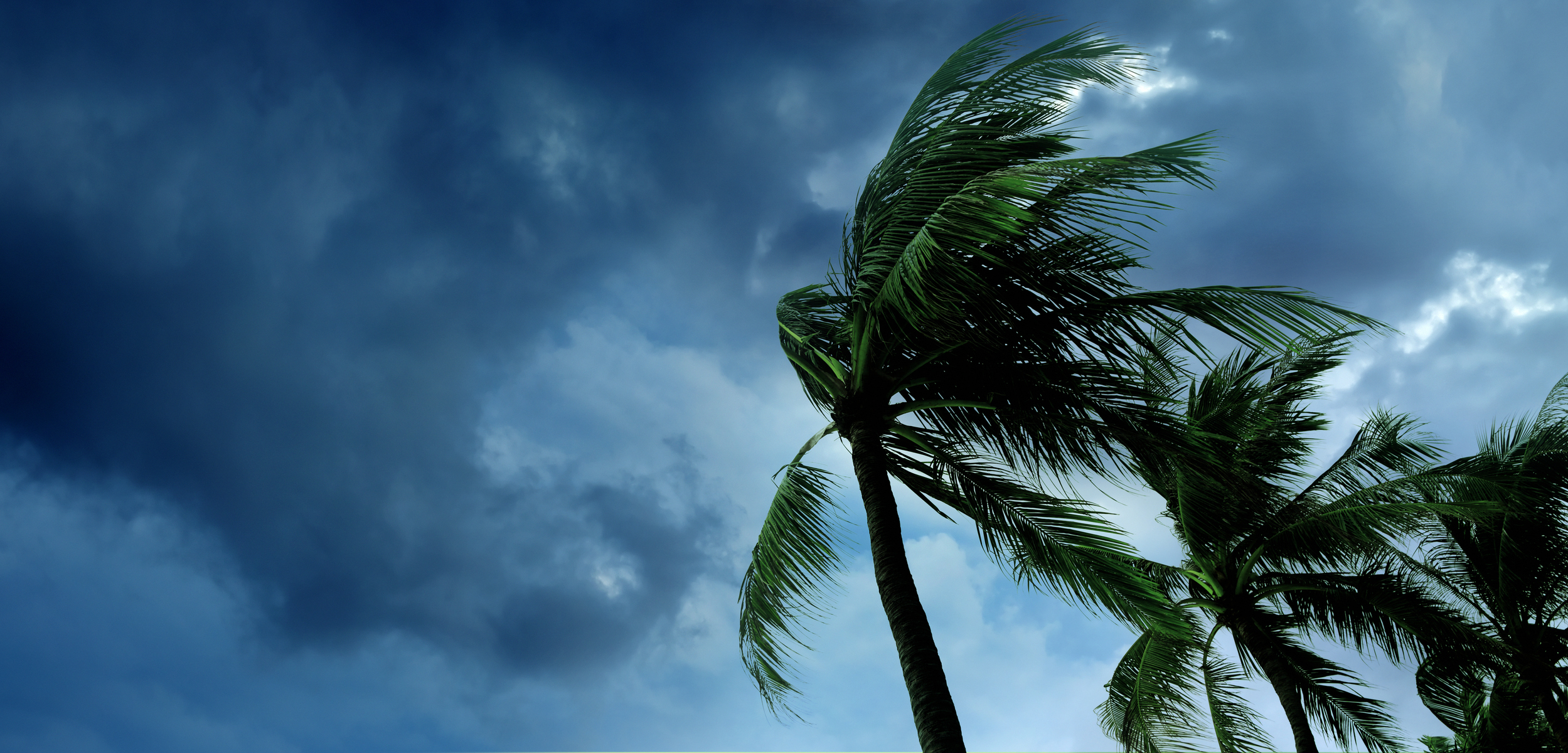 DISASTER PREPAREDNESS - HELPING YOU WEATHER ANY STORM