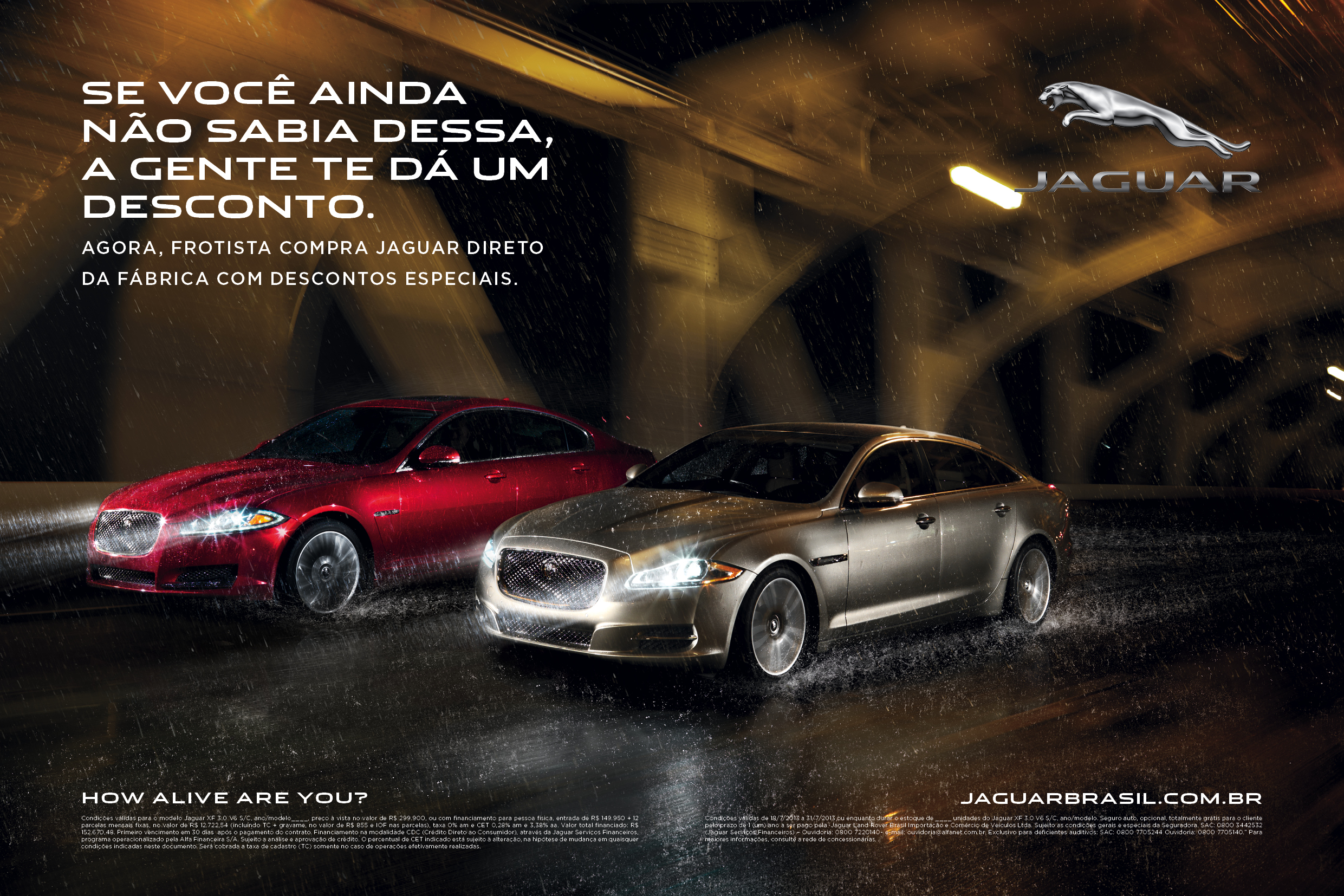 Jaguar_Frontistas_21x14cm_JOAO (1).jpg