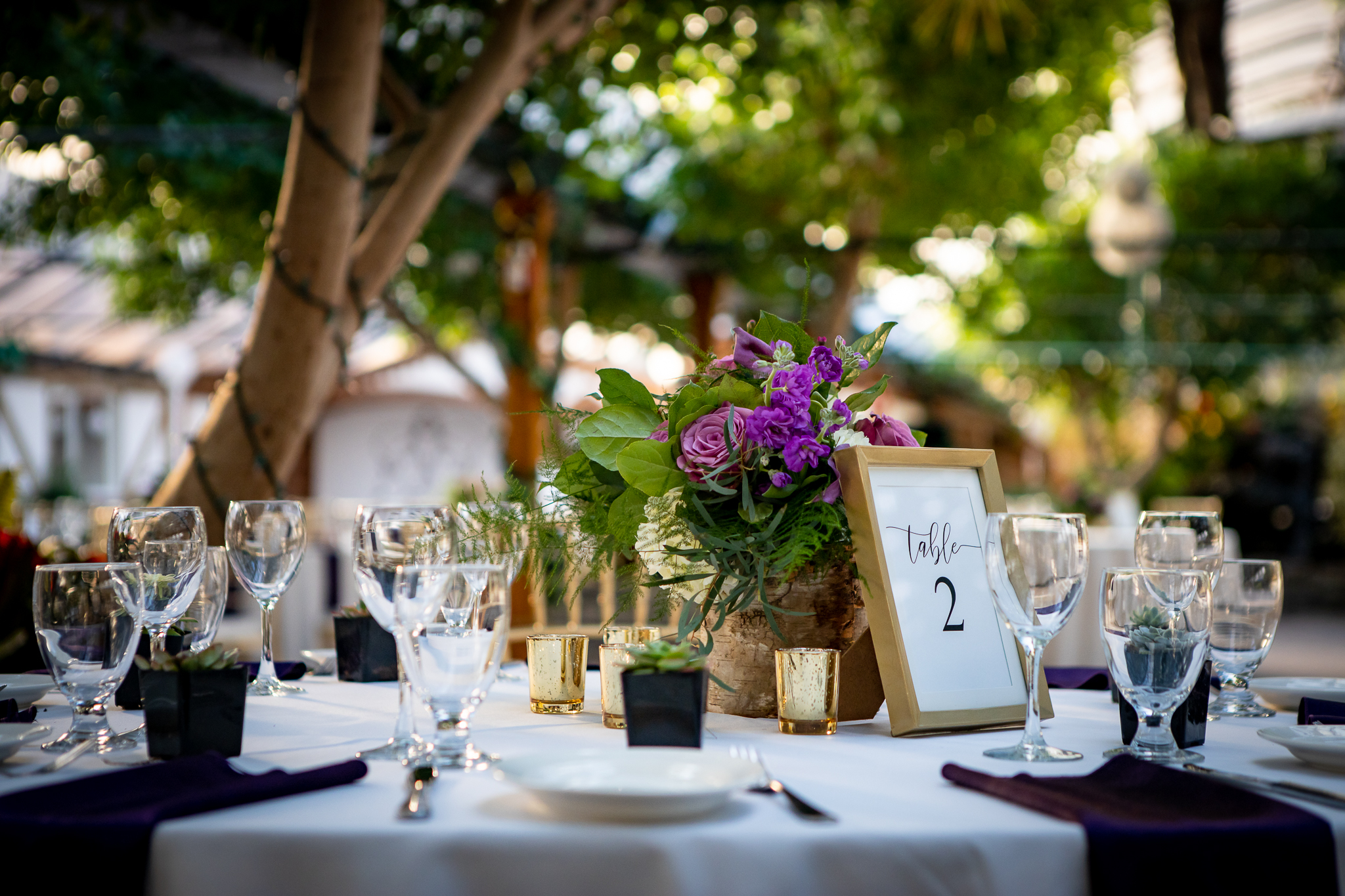 Madsen's Greenhouse wedding photos-31.jpg