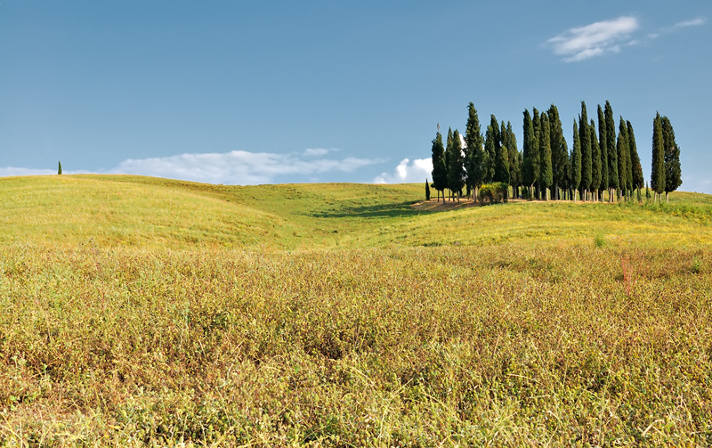 ToscaneA.jpg