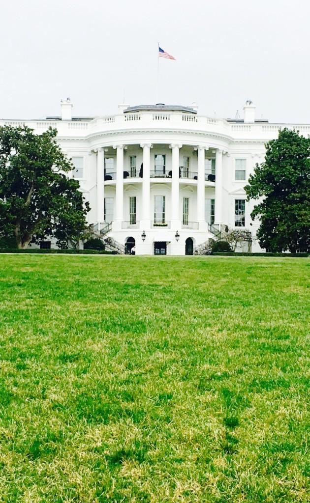 White house6 (1)