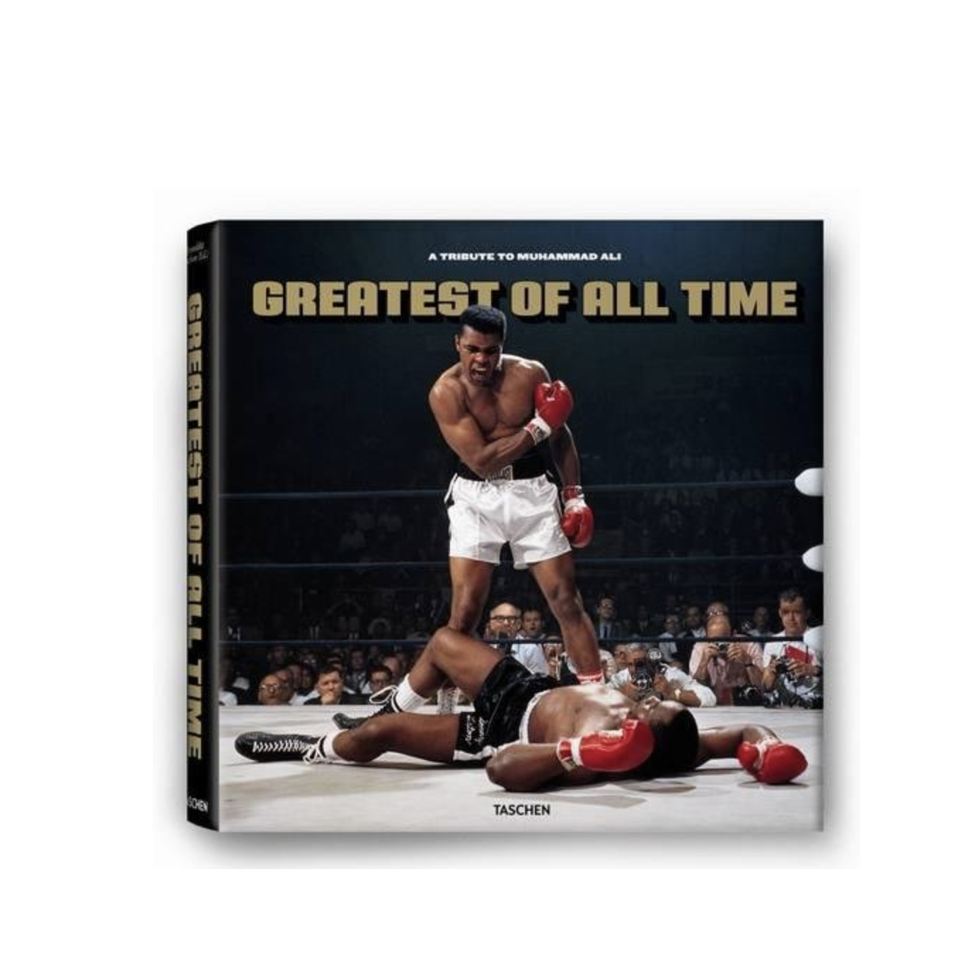 COFFEE TABLE BOOK - This one of Muhammad Ali is not only cool decor for the coffee table, he will also enjoy flipping through this one. $150 but worth it.