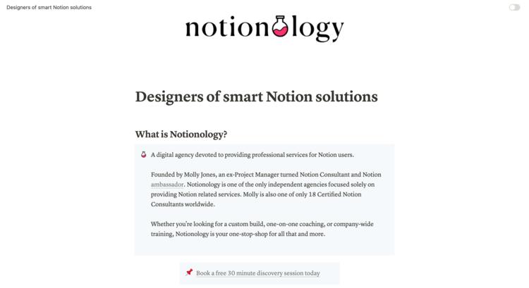notionology website notion web design fruition.png