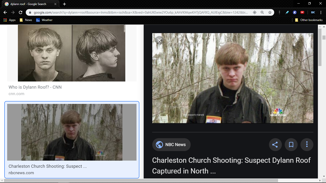 dylann roof 3.png