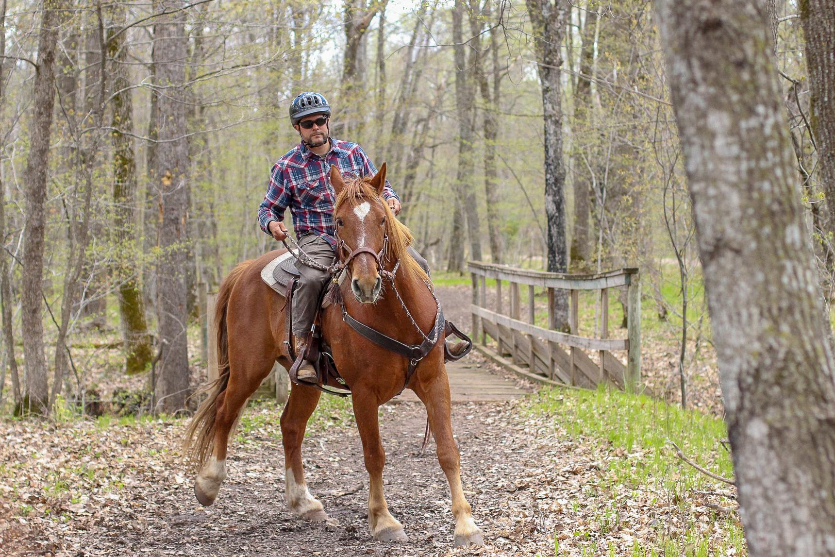 Minnesota Horseback Riding & Camping