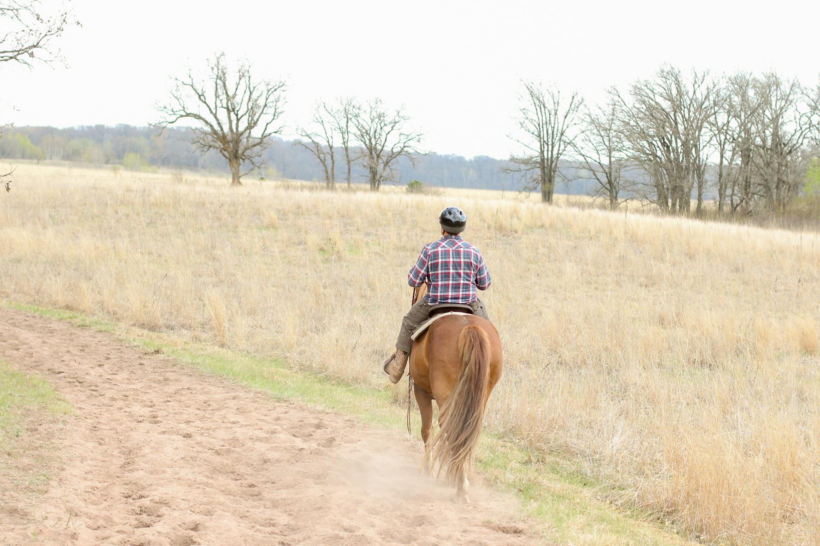 Minnesota Horseback Riding