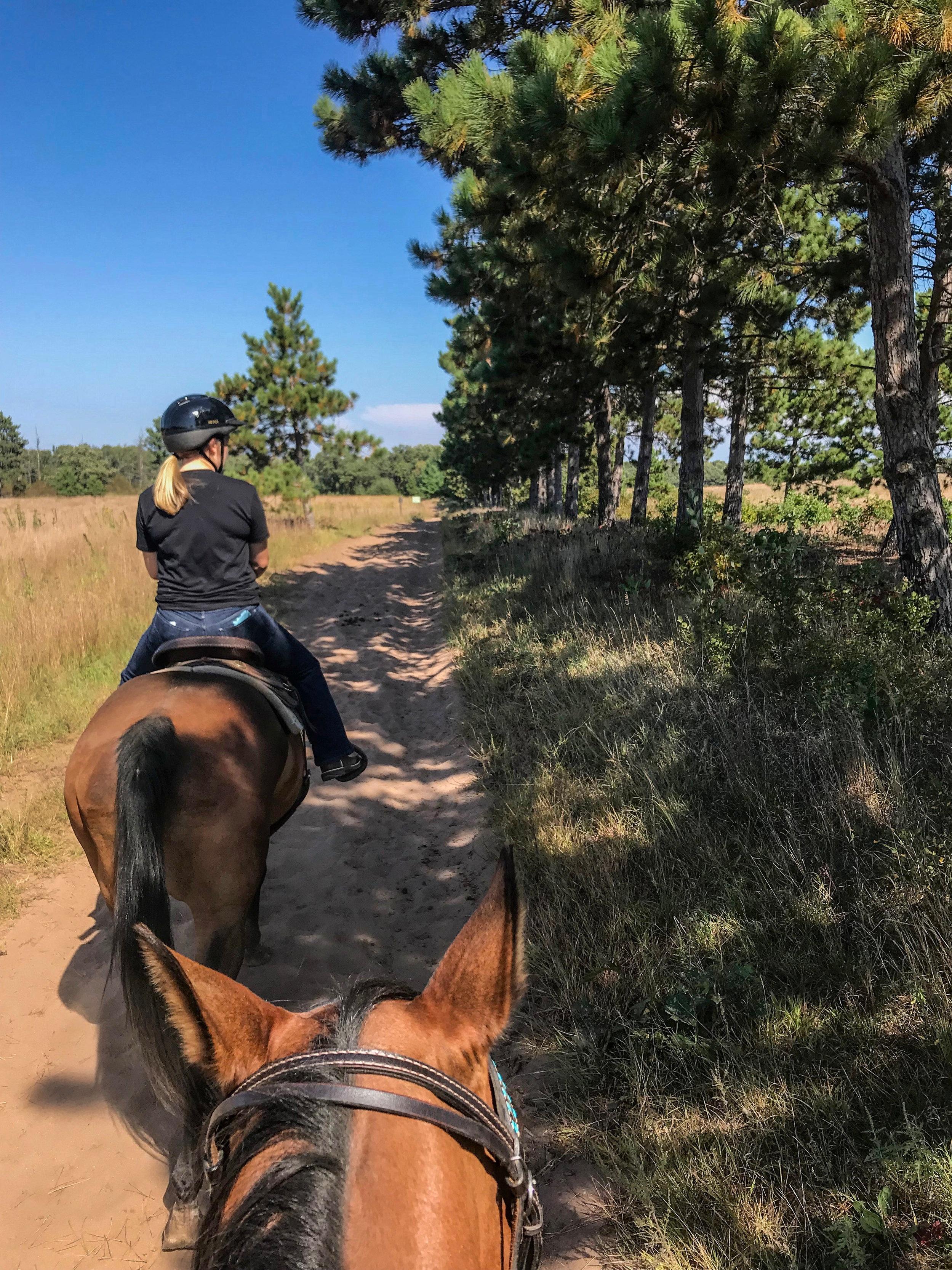 Horseback+Riding+%7C+Minnesota