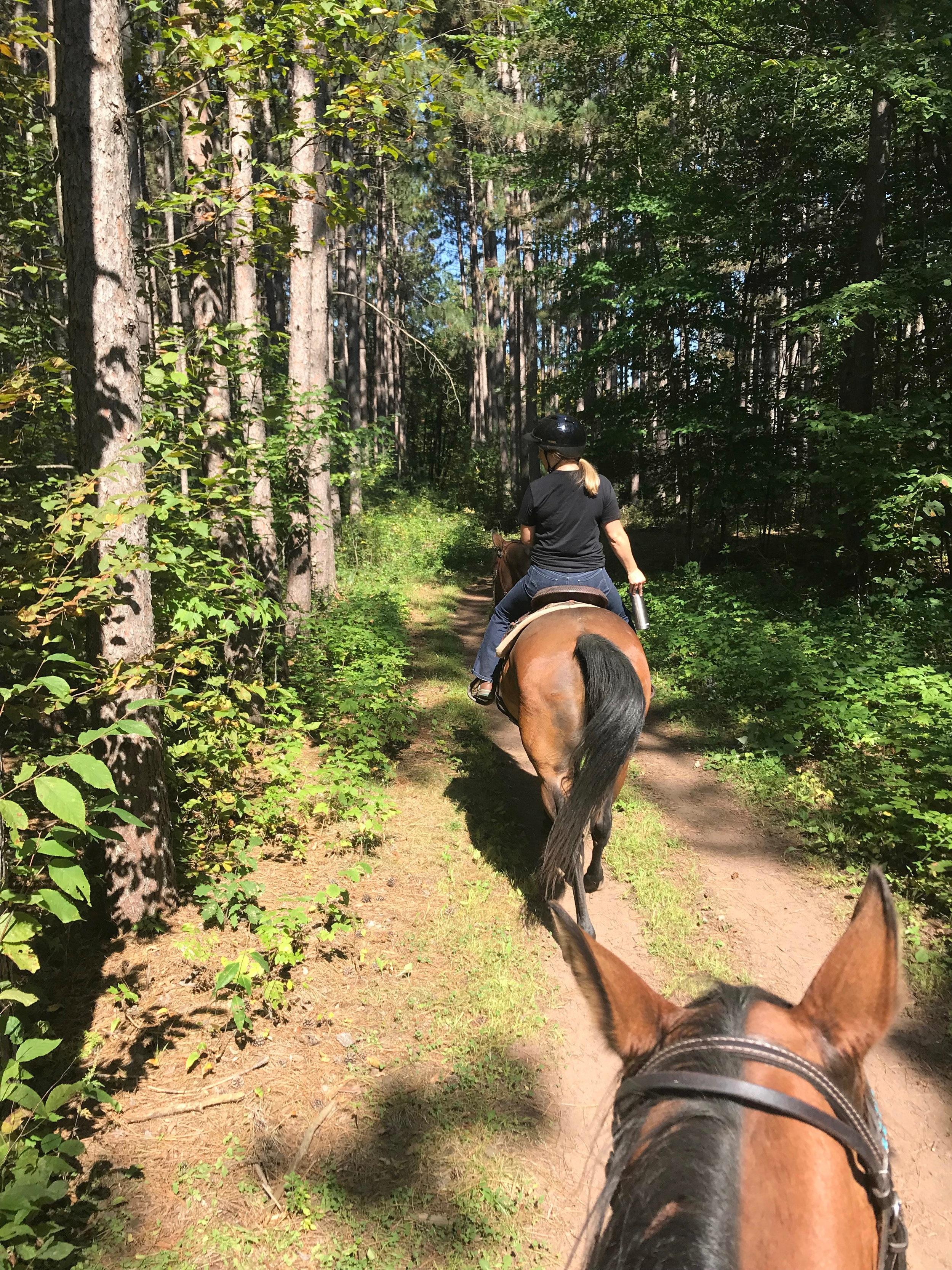 Trail+Riding+%7C+Minnesota