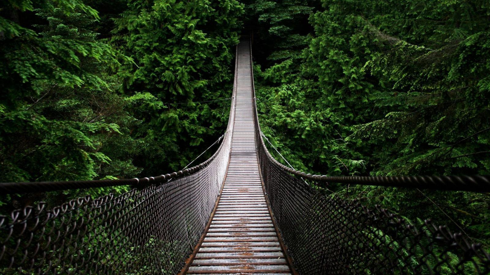 cap bridge.jpg