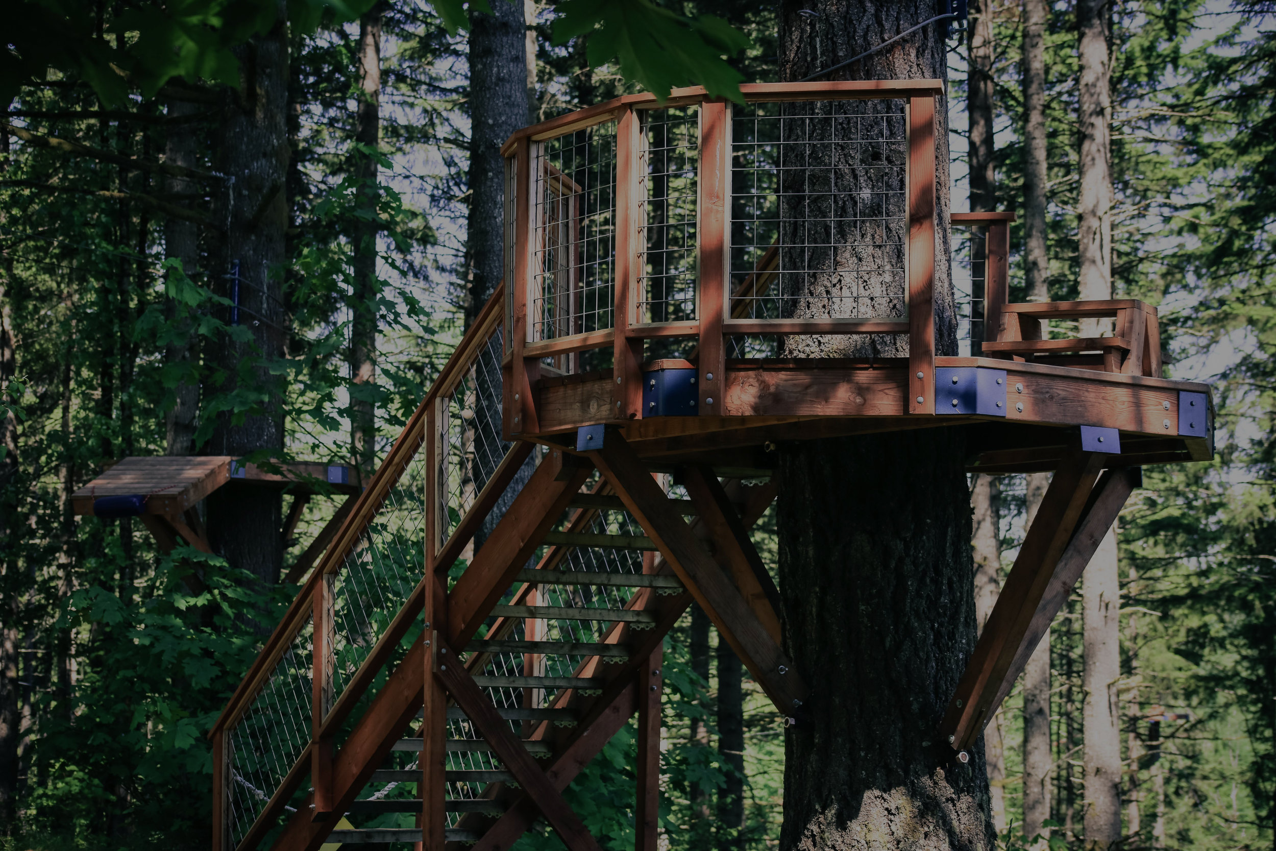 """<font size=""""4"""">ZIP LINE & CANOPY TOURS</font><strong>A combination of zip lines and aerial canopy bridges.</strong><a>LEARN MORE →</a>"""