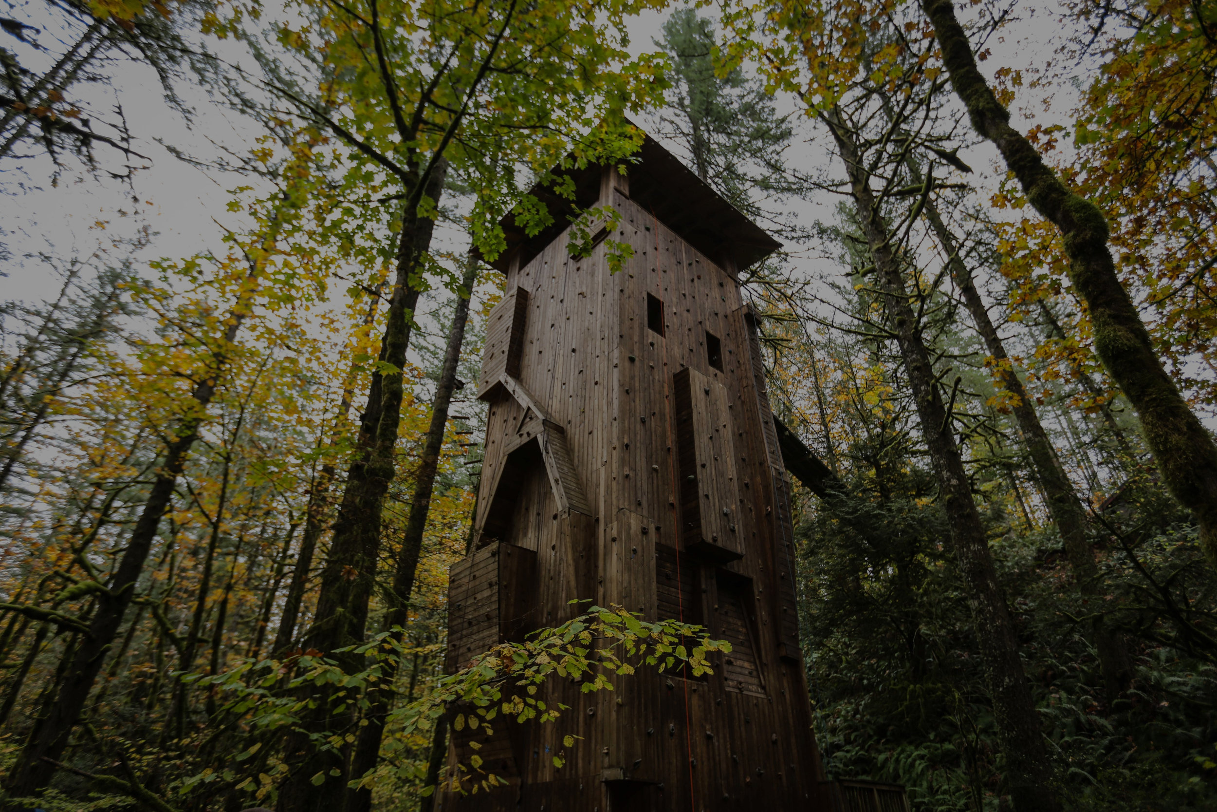 """<font size=""""4"""">ADVENTURE TOWERS</font><strong>As the Outdoor Industry grows, so does the elements and towers we construct.</strong><a>LEARN MORE→</a>"""