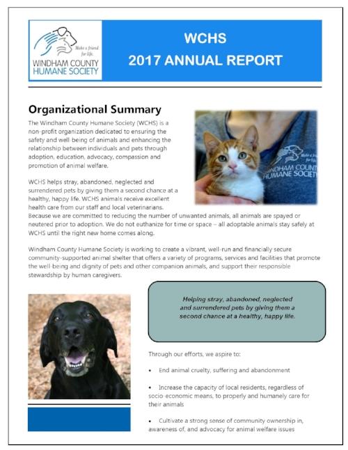 annual report 2017.jpg