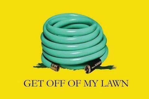 get off my lawn.jpeg