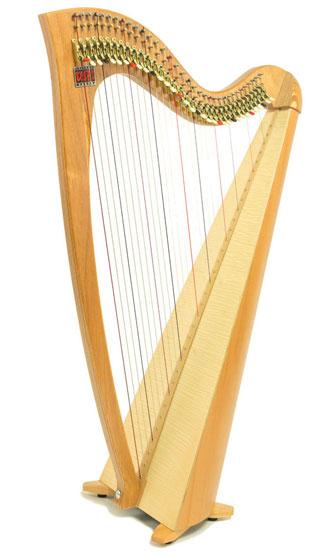siff-saff-student-lever-harp.jpg