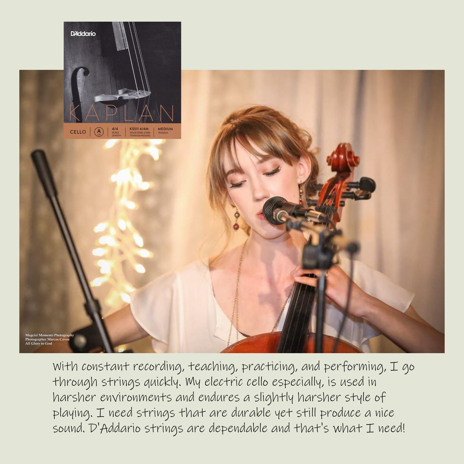 cello strings.jpg