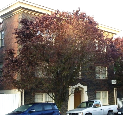 lynnwood-apartments-portland-or-primary-photo.jpg