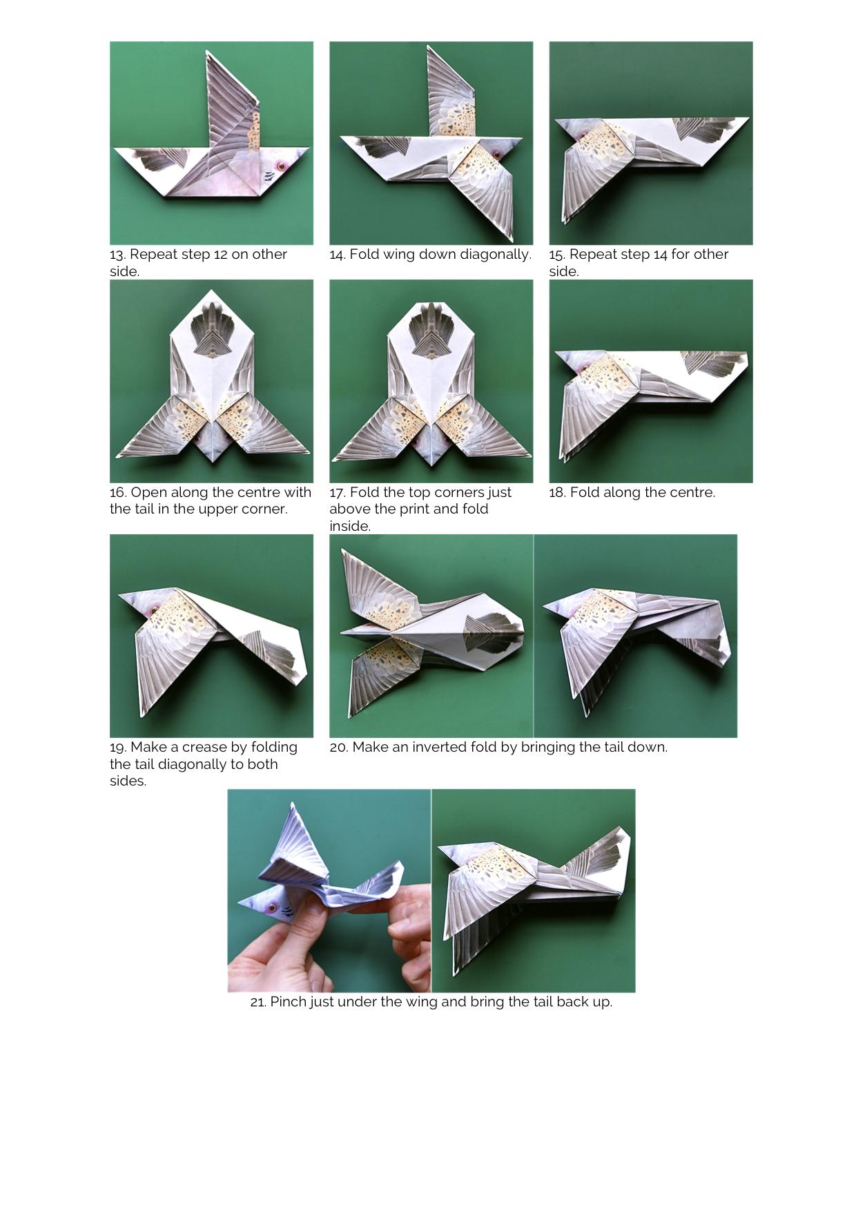 Origami turtle : turtle | 1414x1000