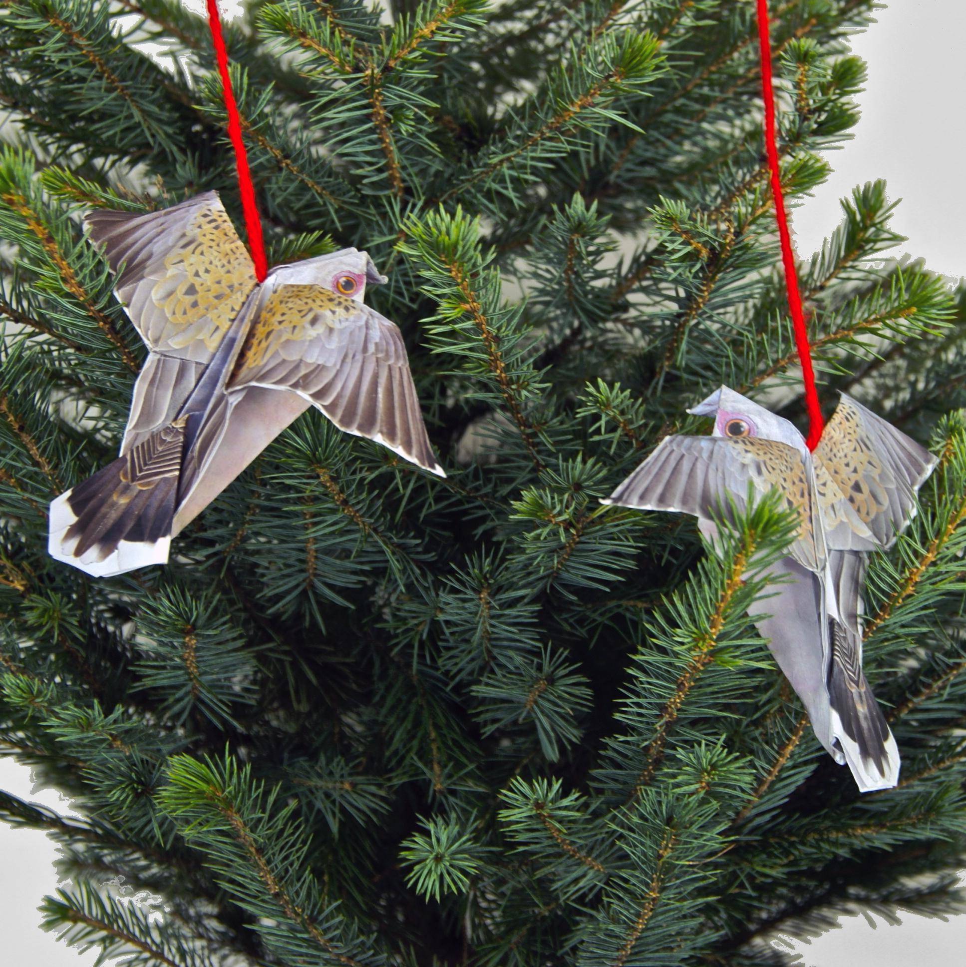 skydance birds in tree.jpg