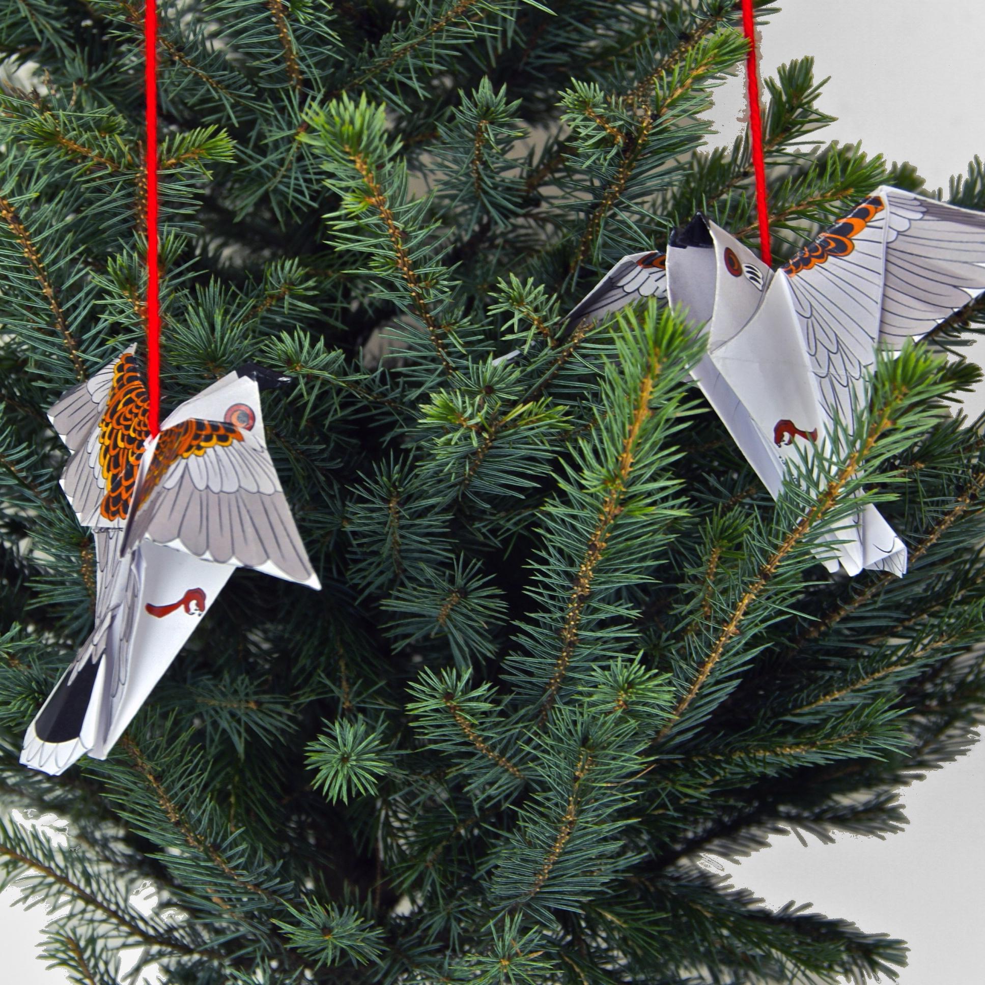 snowy m birds in tree.jpg