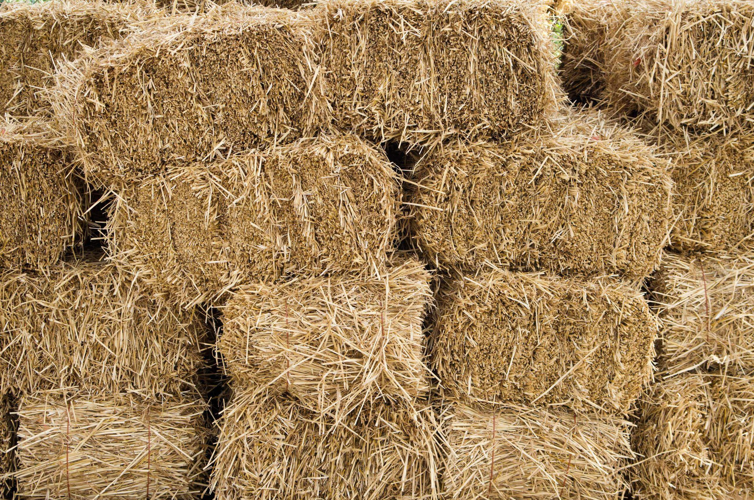 Your go to source for quality hay -