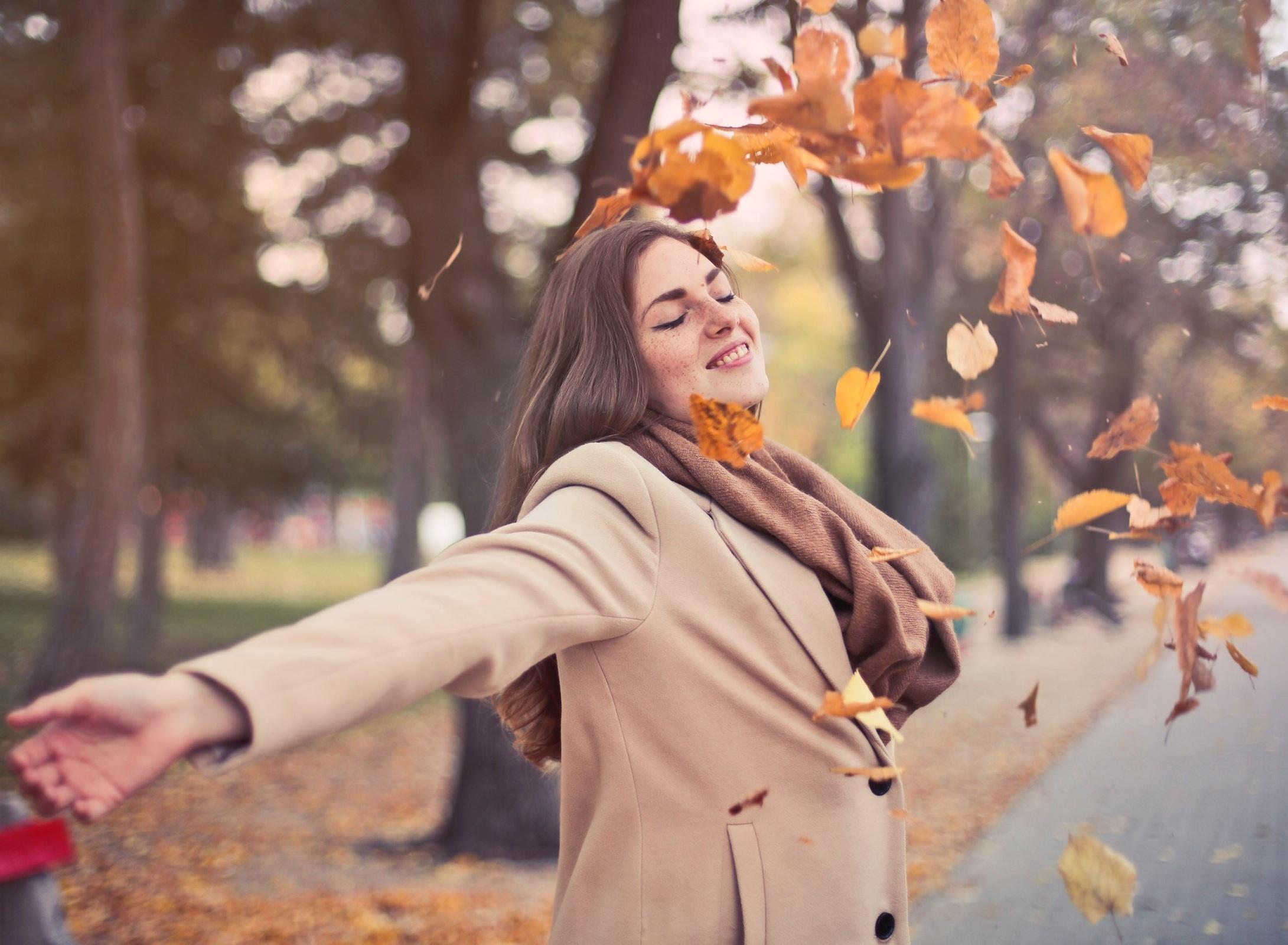air-arm-autumn-762041.jpg