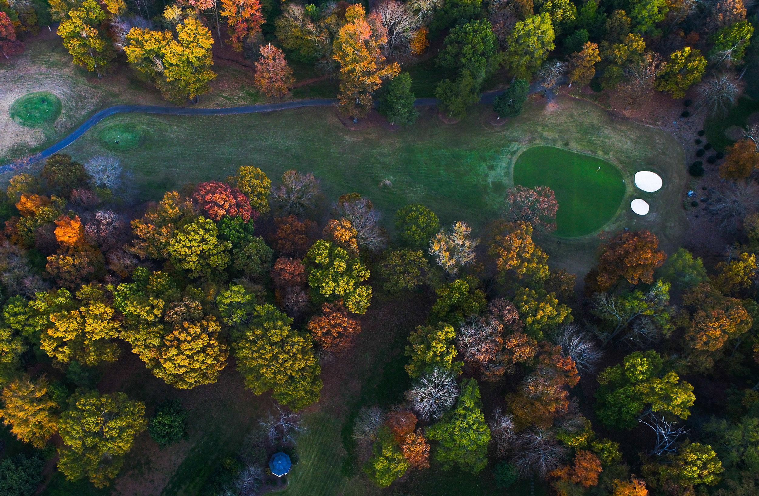 Fall in PG-7.jpg