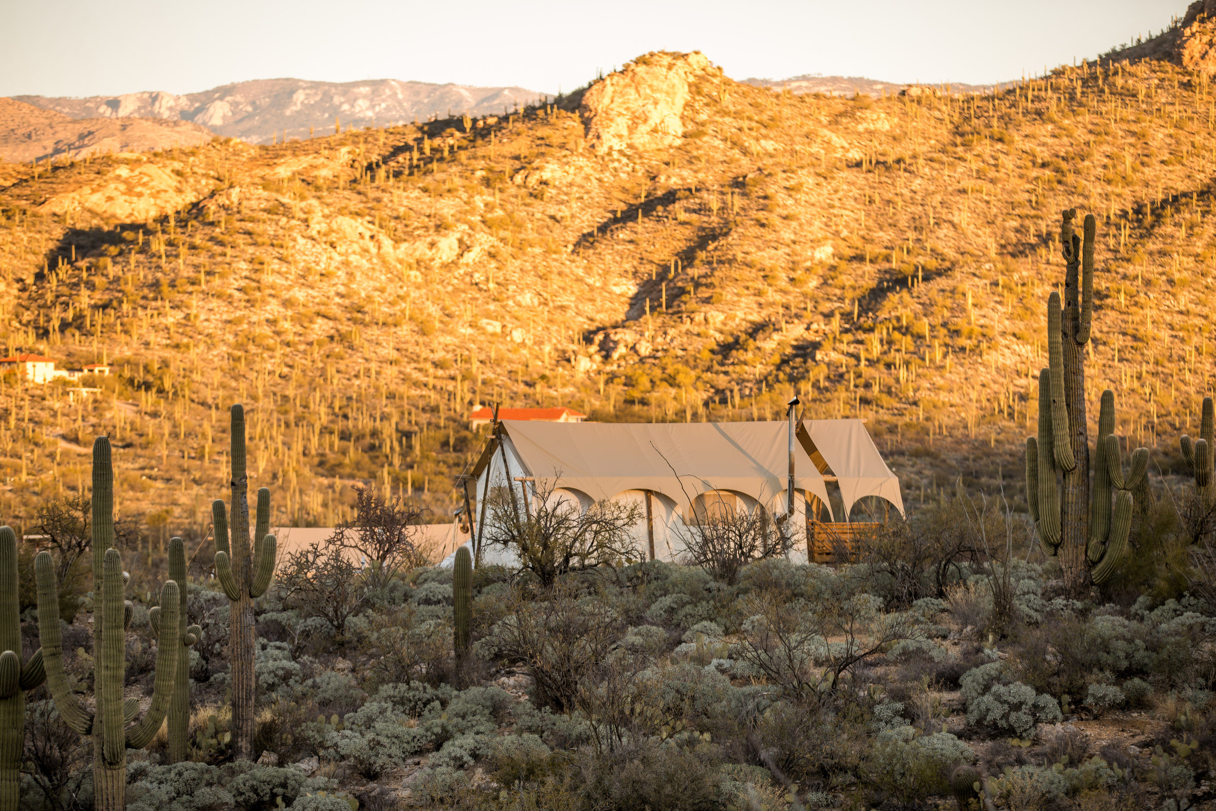 Copy of Under Canvas - Tucson, Arizona