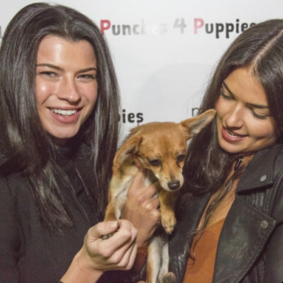 PUNCHIES FOR PUPPIES - Fundraiser