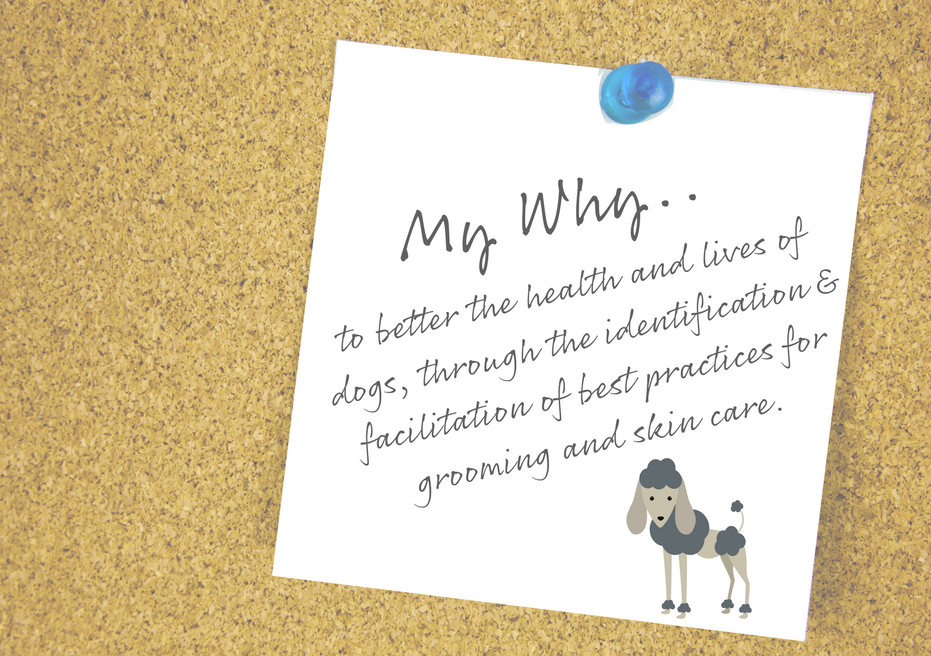 to better the health and lives of dogs, through the identification & facilitation of best practices for grooming and skin care. (1).png