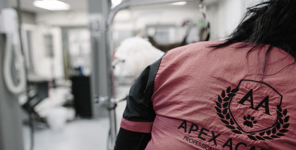 apex-academy-grooming-school.jpg