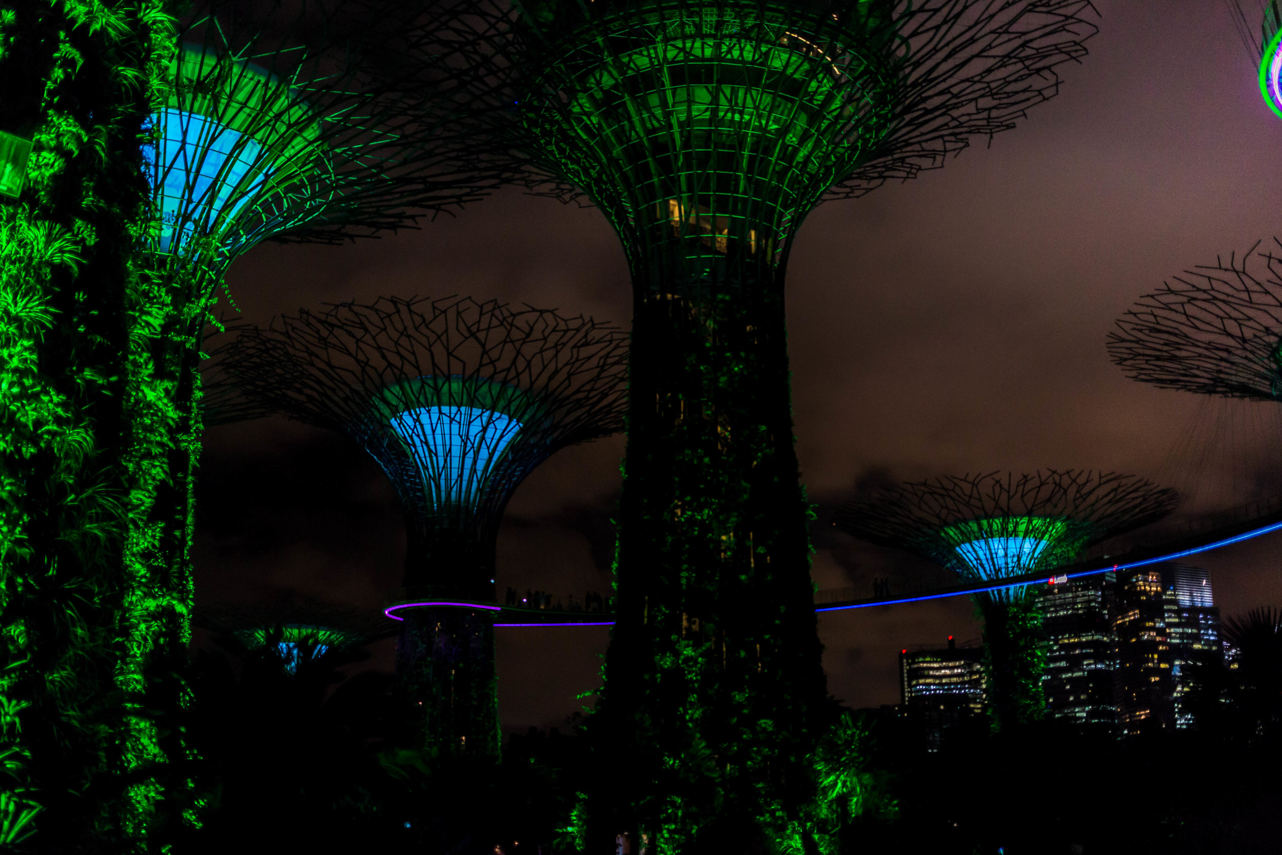 Singapore is always working on new ambitious projects. - The Supertree Grove in the Gardens by the Bay is a relatively new development with 160-foot trees covered in beautiful, exotic flora. Stick around for the Garden Rhapsody every night at 7:45 and 8:45.  Soon they will also host the world's largest indoor waterfall, which is sure to be another spectacle that shouldn't be missed.