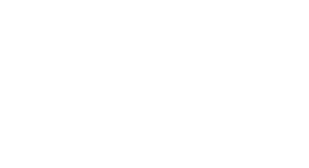 SCHONFIELD CONSULTING-logo-white small.png