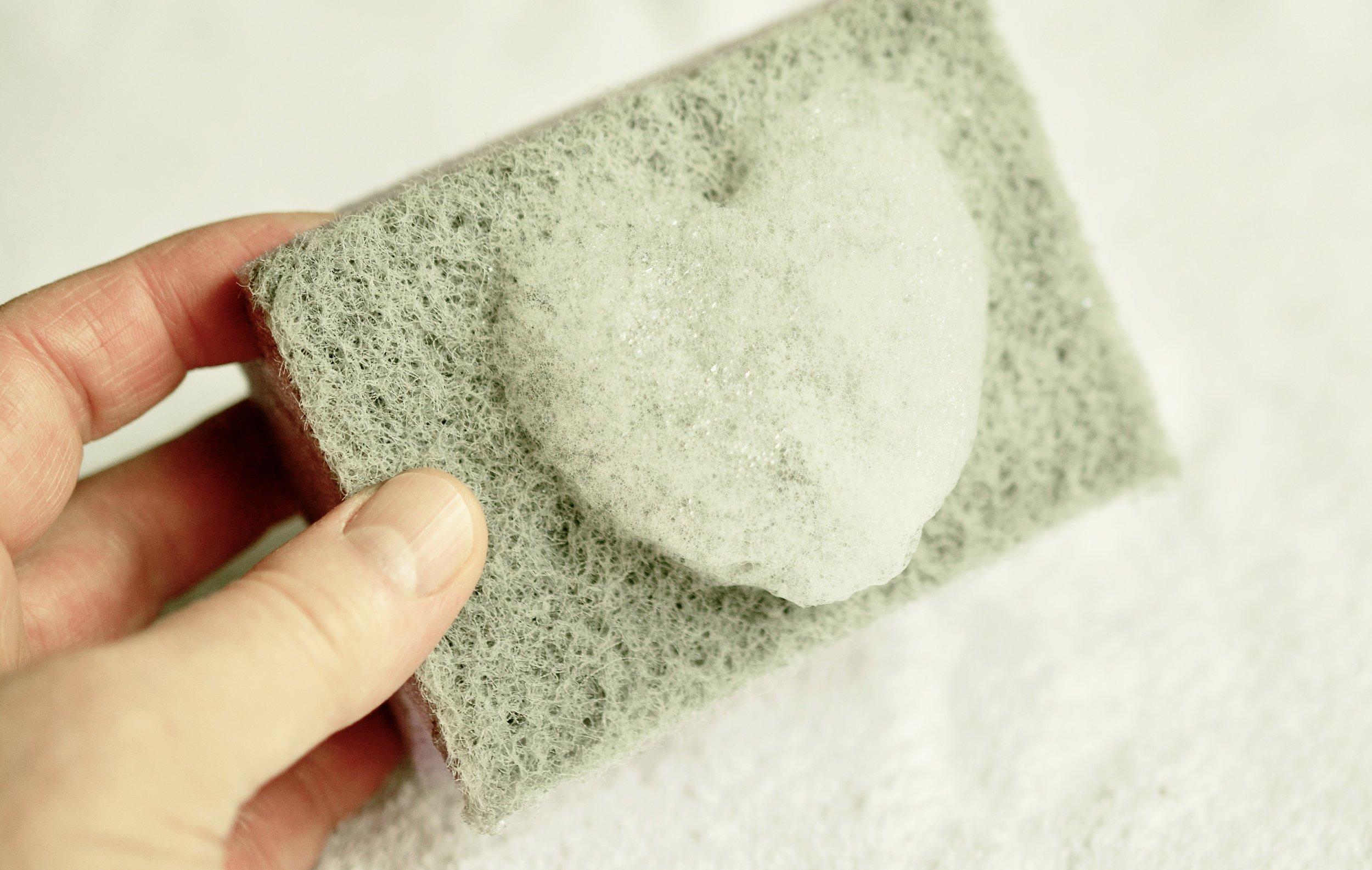 sponge-2541251.jpg