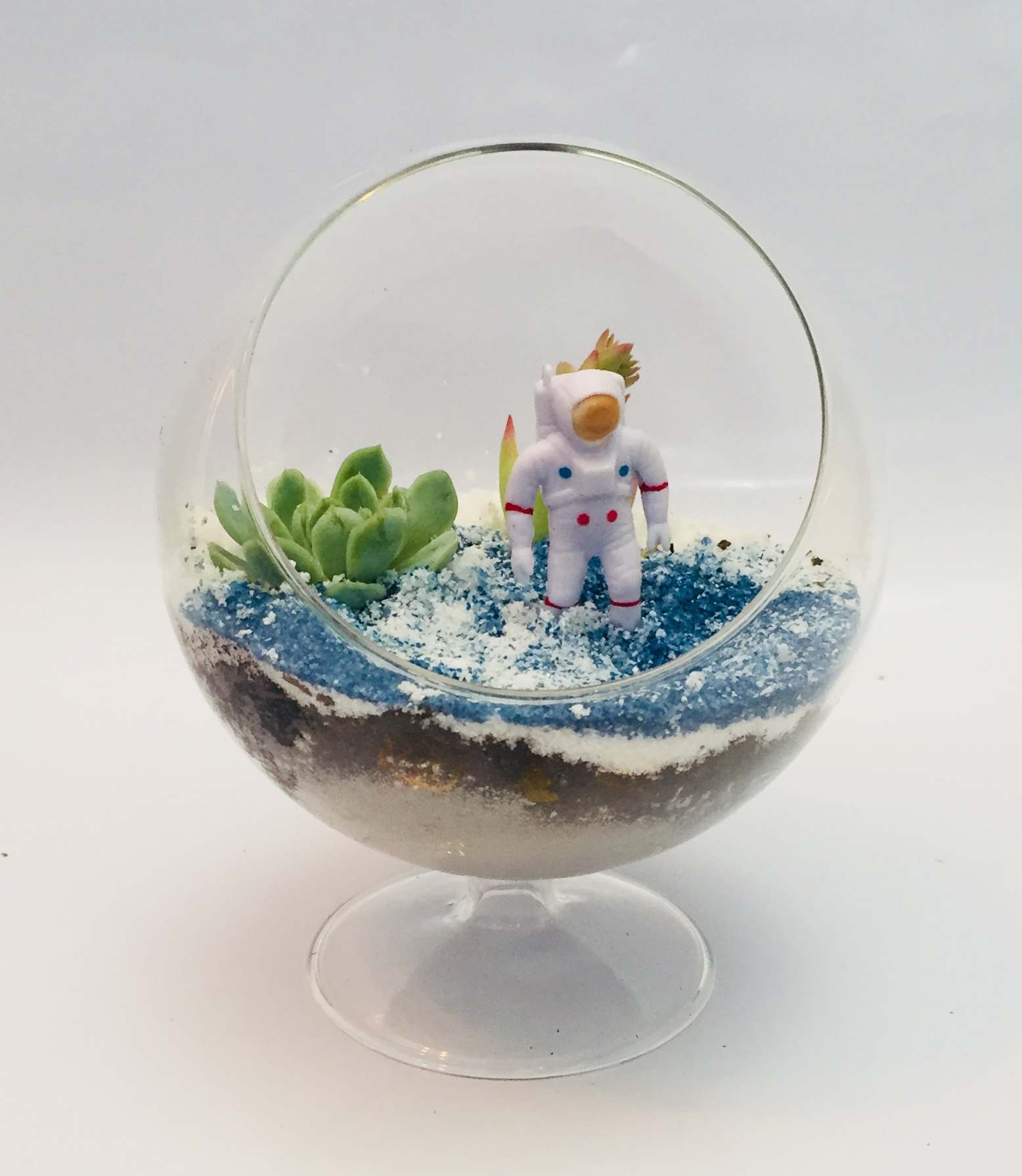 Garden - Make your own terrarium- prices marked on each container along with number of succulents included. All terrariums come with 1 miniature. Prices $15 - $75Extra succulents - $4Extra miniatures - $4