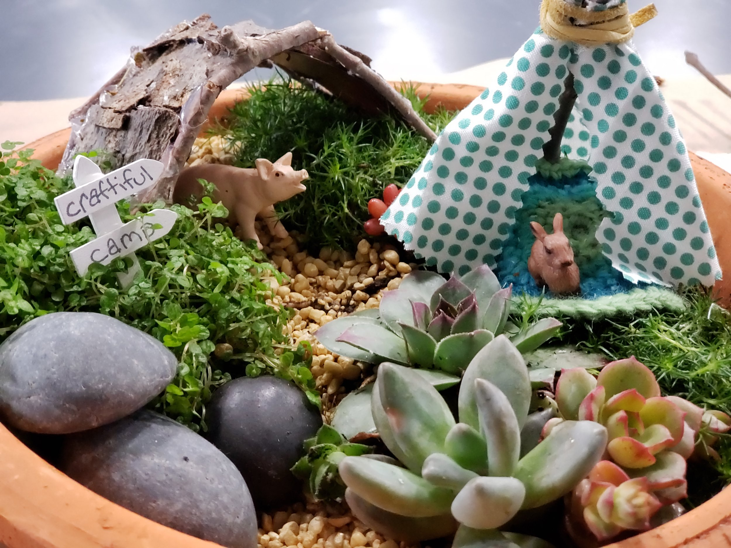 miniatiure garden camp 2.jpg