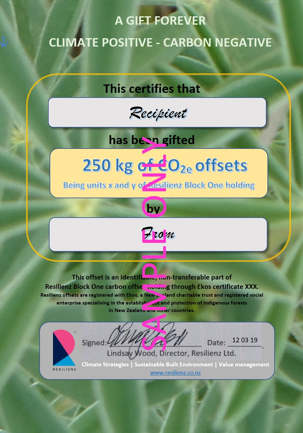 Resilienz Gift Certificate