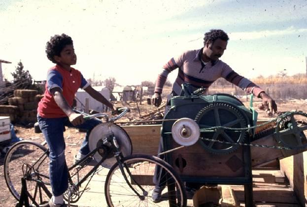 The Dual Purpose Bicycle shells corn