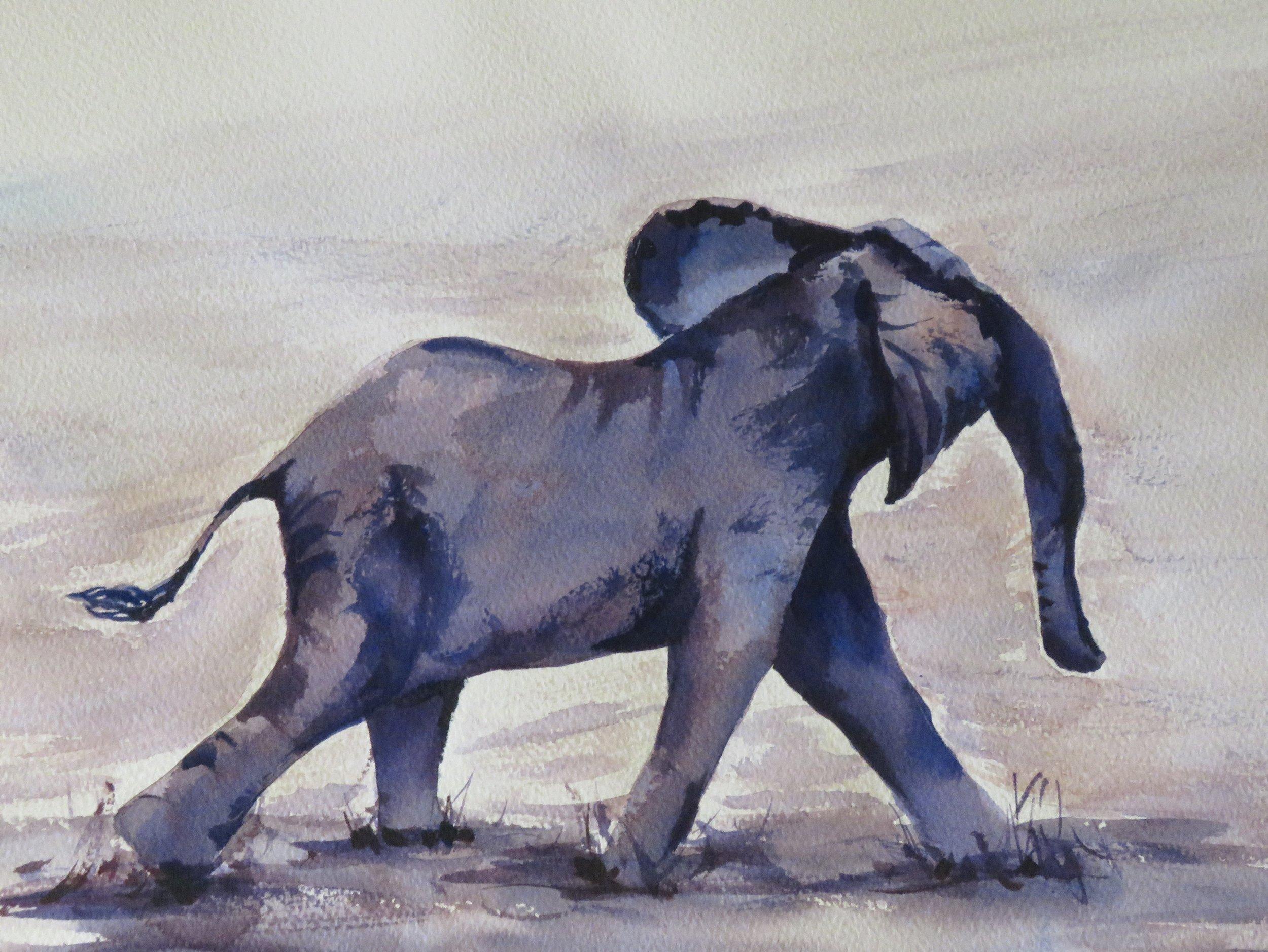 Baby Elephant on the Run        36 x 26cm    SOLD