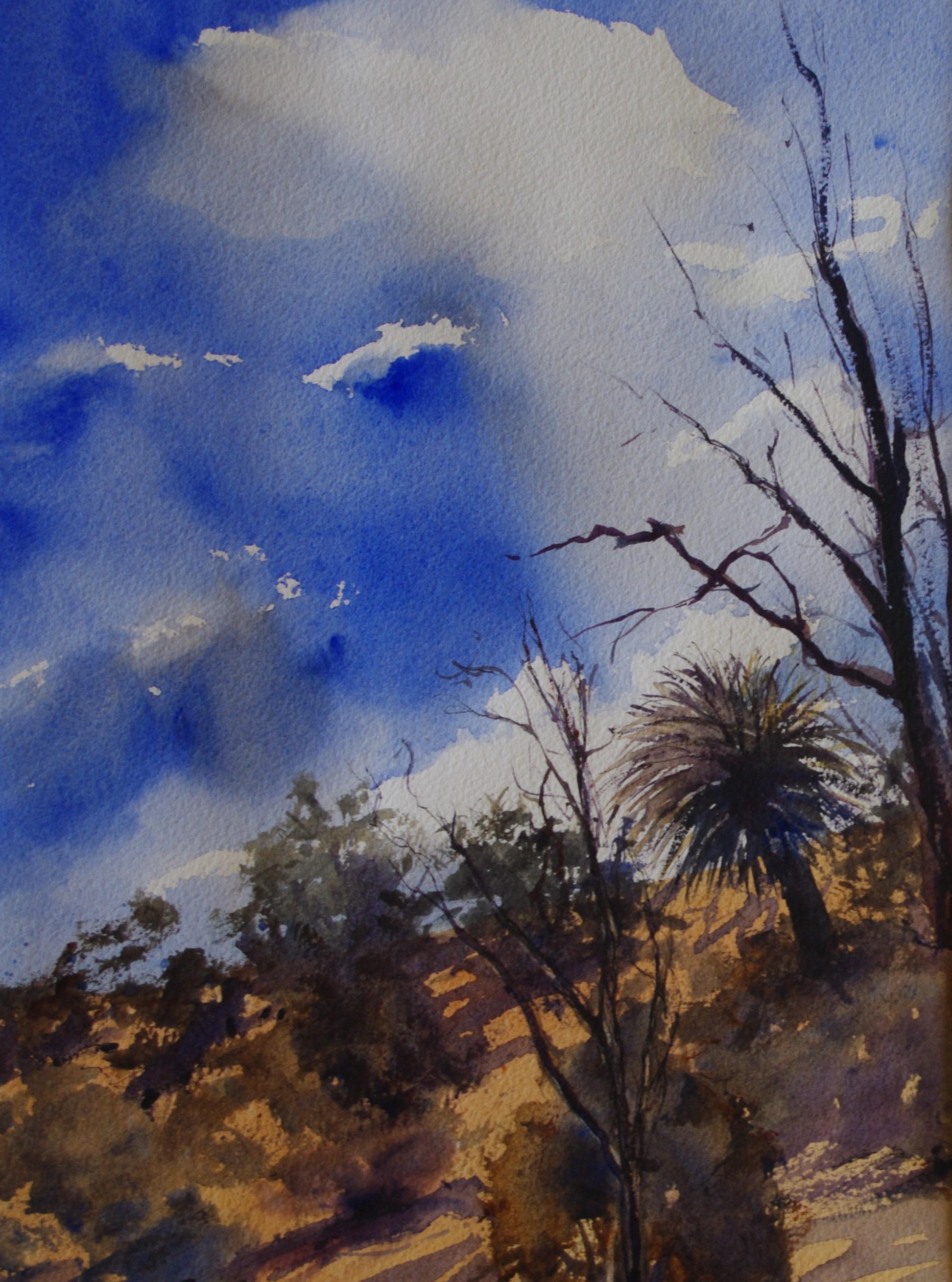 Australian Bush Scene  26cm x 36cm  Original Watercolour  Unframed   $150