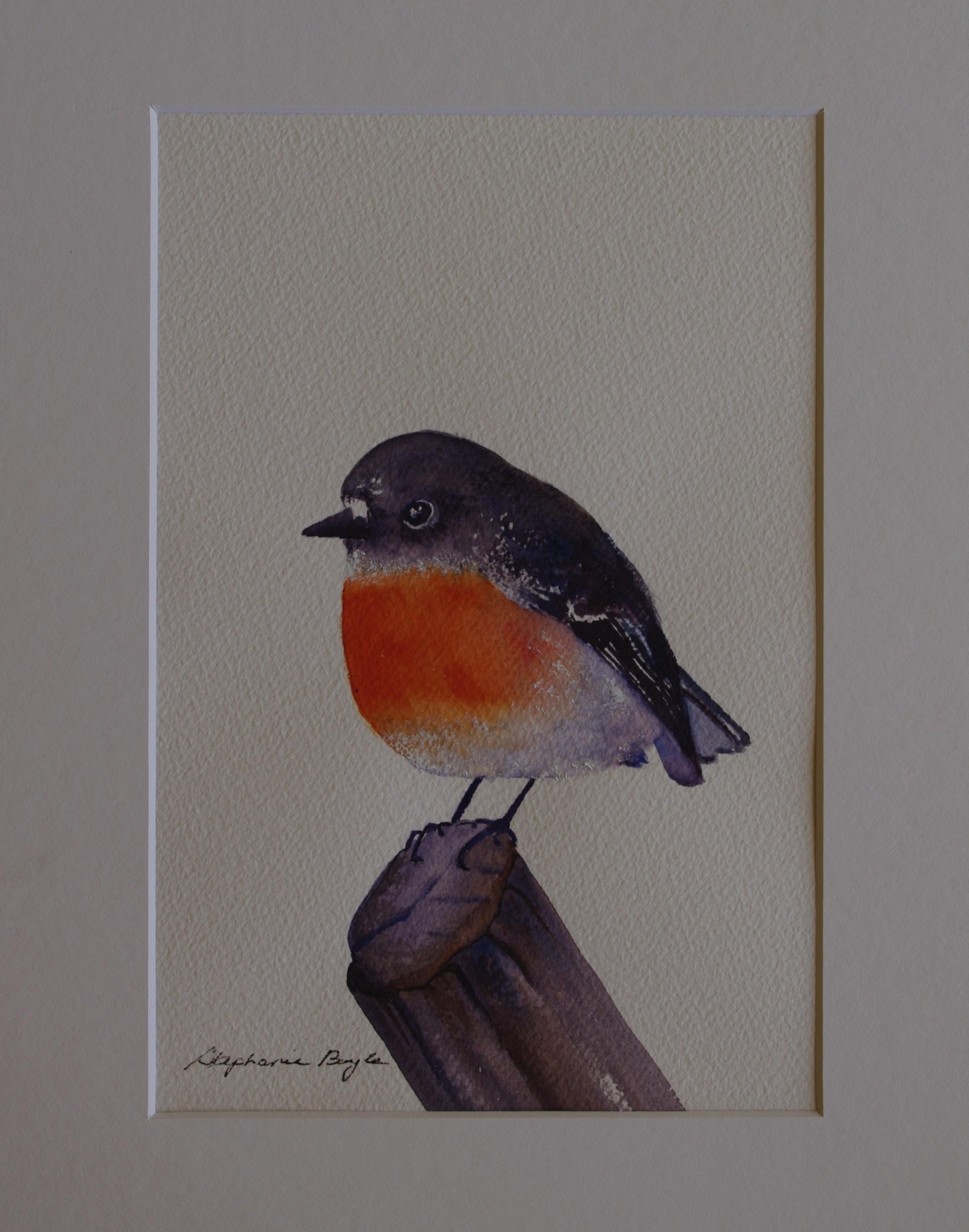 Red Robin  17cm x 22cm  Original Watercolour   Unframed   $100