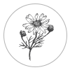 piage_lorraine_photography_flower.png