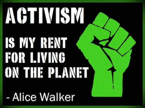 Activism-quote-by-Alice-Walker.jpg