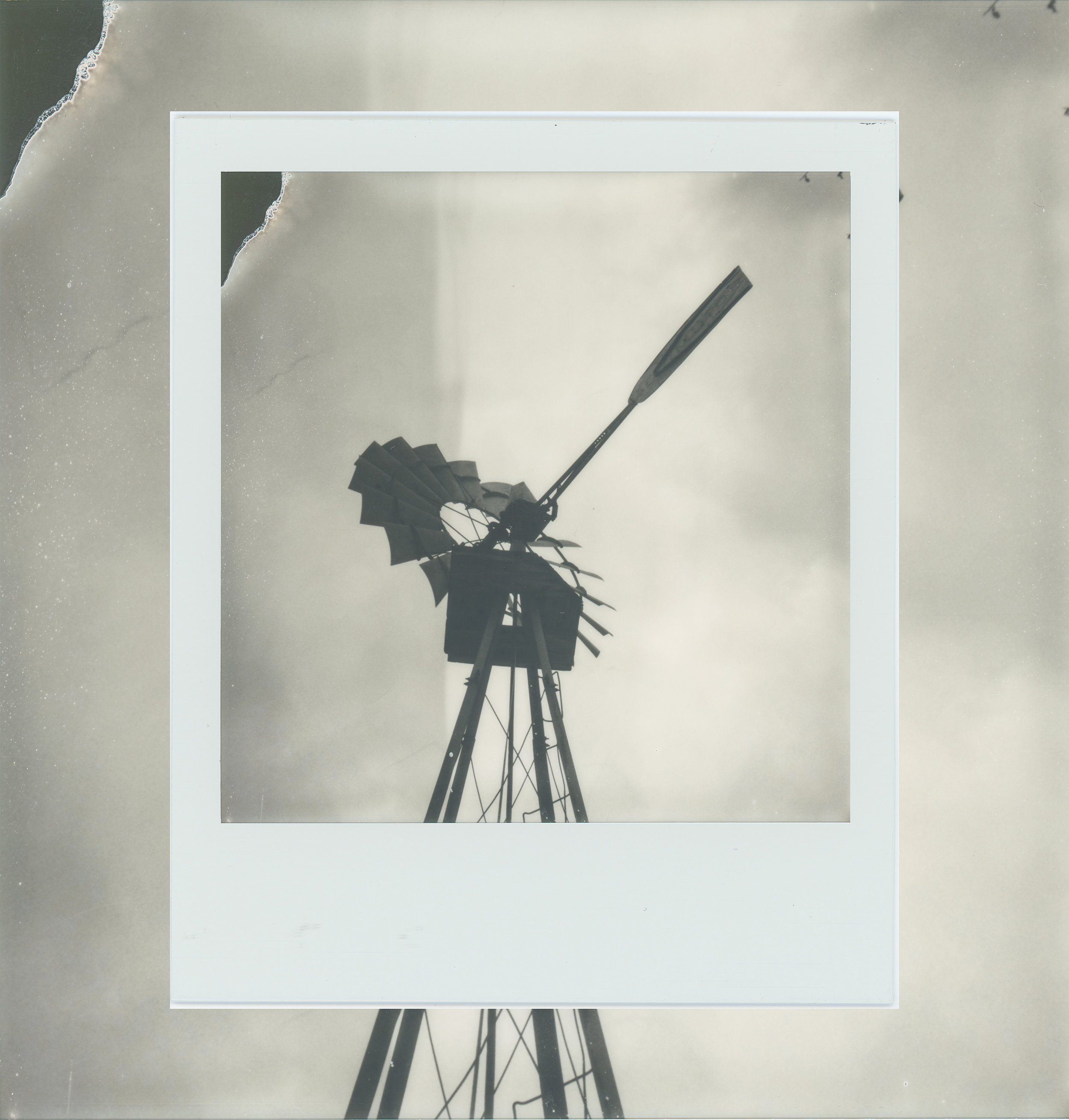 Wind_Polaroid_.jpg